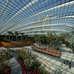 5102e38fb3fc4b7992000136_cooled-conservatories-at-gardens-by-the-bay-wilkinson-eyre-architects_413c445_h-528x396